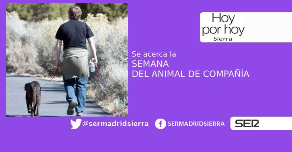 HOY POR HOY SIERRA. SEMANA DEL ANIMAL DE COMPAÑÍA