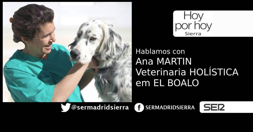 HOY POR HOY SIERRA. ANA MARTIN Y LA VETERINARIA HOLISTICA DE EL BOALO
