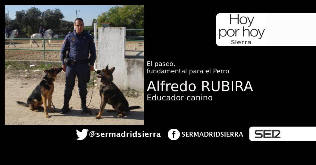 HOY POR HOY. ALFREDO RUBIRA, EDUCADOR DE PERROS
