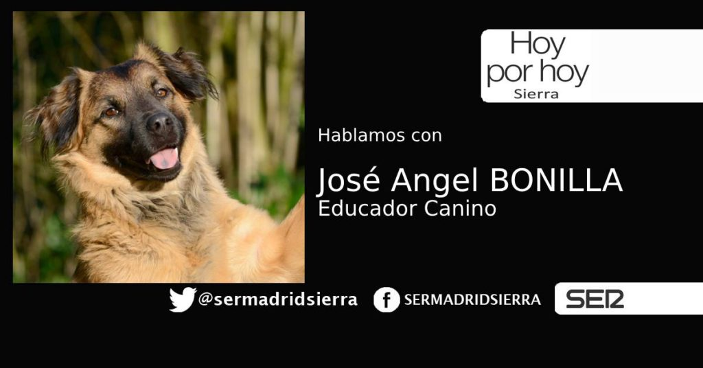 HOY POR HOY SIERRA. JOSÉ ANGEL BONILLA, EDUCADOR CANINO