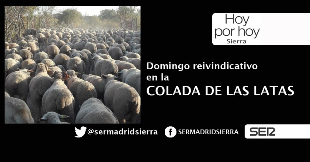 HOY POR HOY. DOMINGO REIVINDICATIVO EN LA COLADA DE LAS LATAS