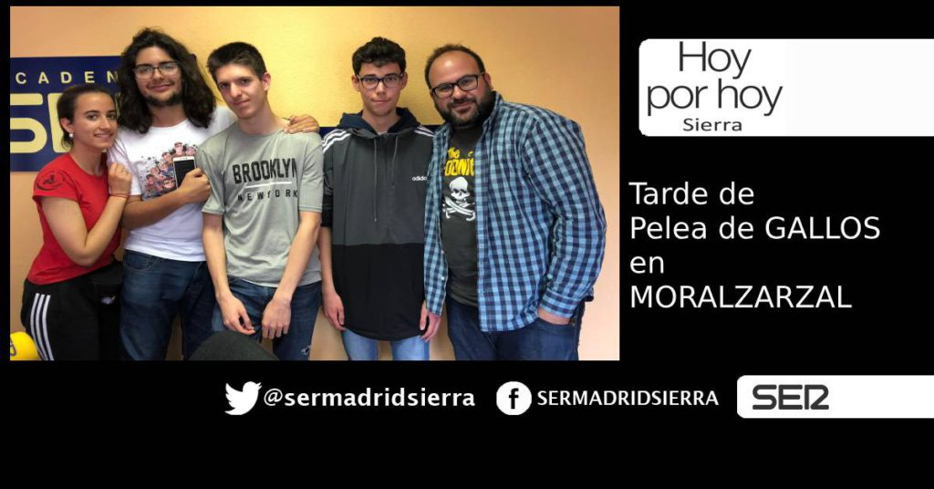HOY POR HOY. ESTA TARDE, PELEA DE GALLOS EN MORALZARZAL