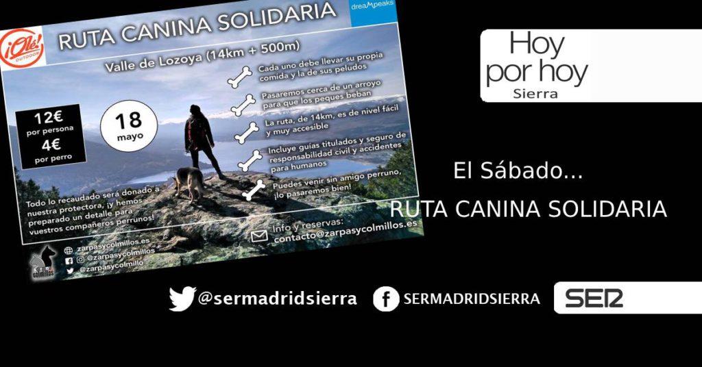 HOY POR HOY. «ZARPAS Y COLMILLOS» Y LA RUTA CANINA SOLIDARIA