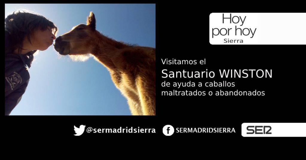 HOY POR HOY. VISITAMOS EL SANTUARIO WINSTON PARA CABALLOS