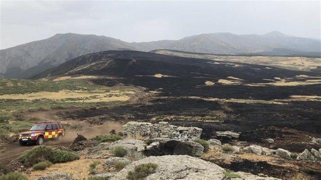 Becerril de la Sierra propone una marcha cicloturista para la reforestación del Parque Nacional de la Sierra de Guadarrama