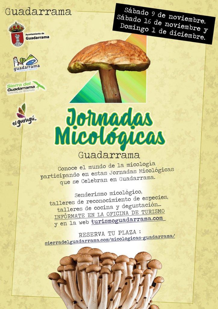 Jornadas Micológicas en Guadarrama
