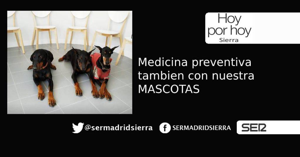 HOY POR HOY. Medicina preventiva tambien con Perros y Gatos