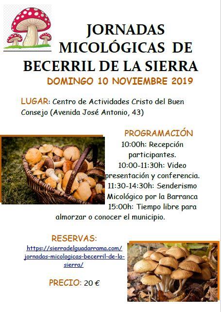 Jornadas Micólogicas en Becerril de la Sierra