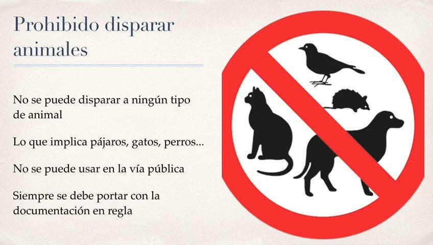 La Concejalía de Seguridad de Valdemorillo recuerda la prohibición de carabinas de aire comprimido en las calles